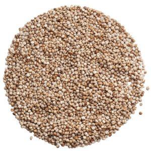 Quinoa Vikinga svenskodlad
